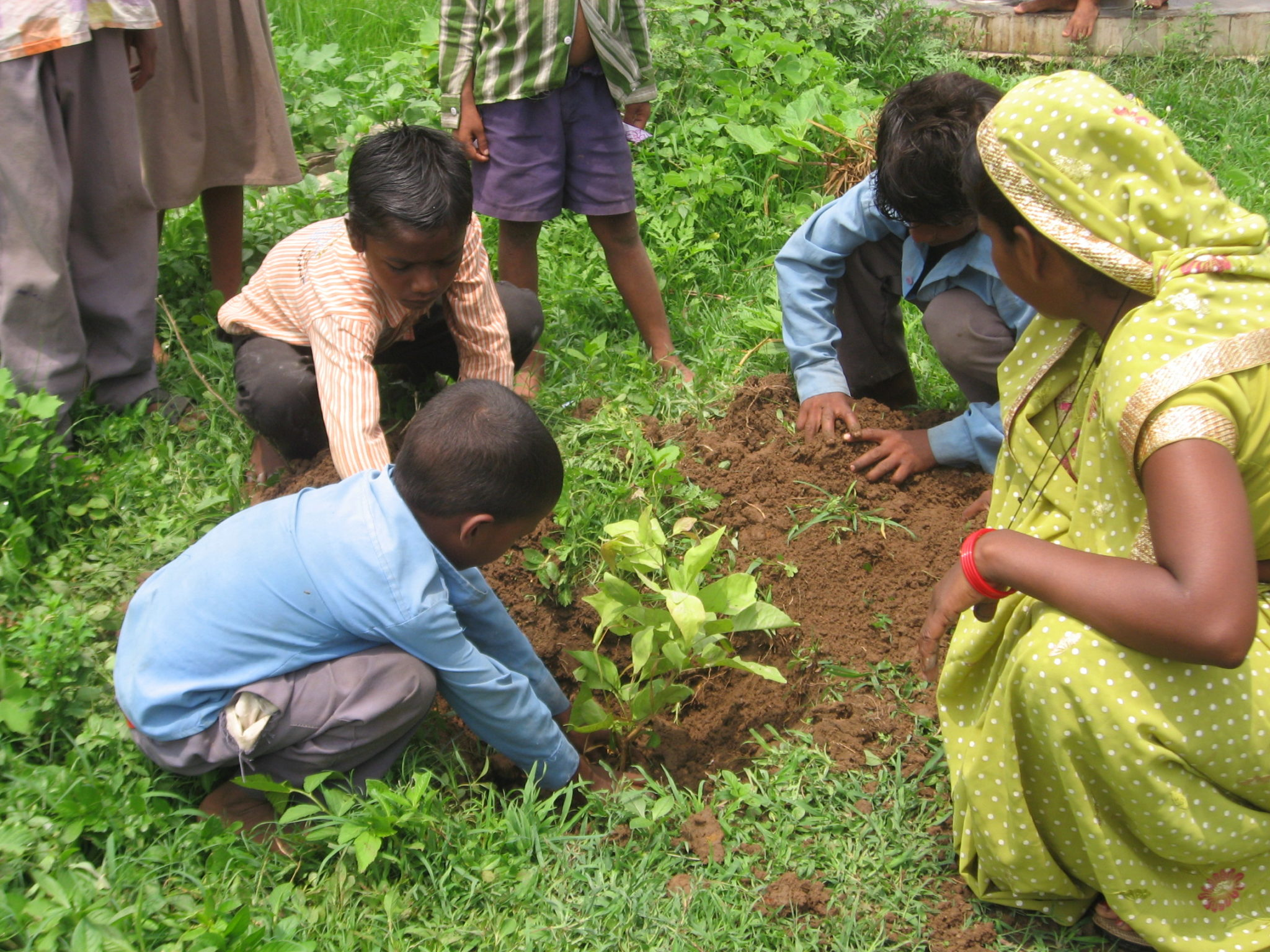 indian children in the vegetable garden