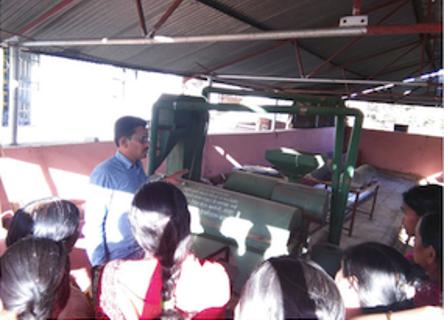Préparation à la construction d'un moulin à lentille géré par les femmes