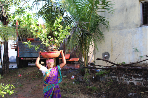 Femme portant un arbre