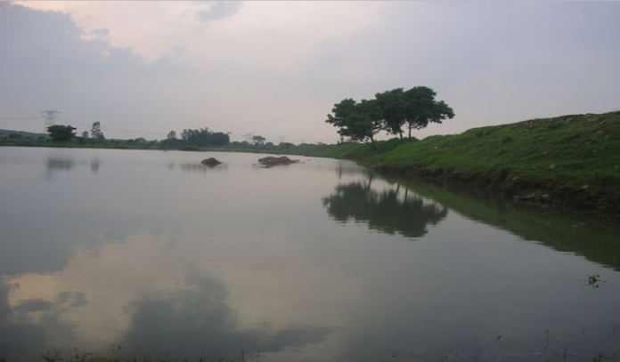 retention basin dug by NGO Rain Drop in India