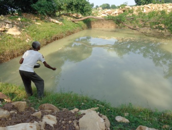 indian man praticing fish farming in a retention basin